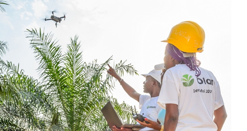 Two employees using a drone to inspect palm crop health, Gabon.